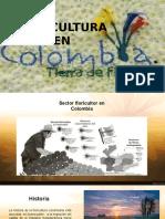 Floricultura en Colombia