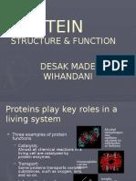 Protein Structure & Function Dr. Desak