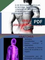 Presentacion Hernia Discal