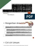Phylum Annelida PPT