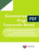 12-Programa-Emprende-Mama.pdf