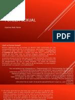 Presentacion Pureza Sexual