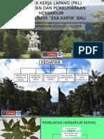 Presentasi Pkl Kebun Raya Bali