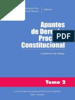 Apuntes Derecho Procesal t2