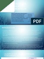 Historia de Las Partículas Fundamentales