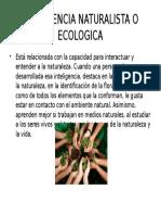 Inteligencia Naturalista o Ecologica