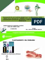 CONSERVANTES NATURALES NODO CESAR.pptx