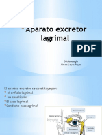 Aparato-excretor-lagrimal