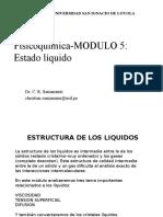 MODULO 5 Estado Liquido SAMANAMU.ppt