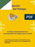 Percepcion Del Riesgo