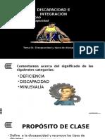 discapacidad e integracion