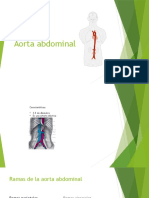 Aorta Abdominal, Vena Cava Inferior y Sistema de La Vena Porta..