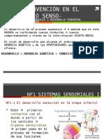 Ppt Uf1.Nf1. Sistemas Sensoriales y Desarrollo Sensorial 1