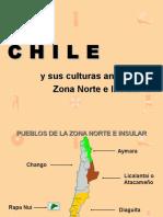 Pueblos Originarios de Chile Zona Norte 130403204549 Phpapp02