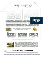 puerto maldonado2.docx.pdf