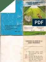 Divina Providencia Comp