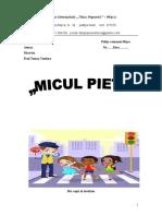 0_parteneriatmiculpieton