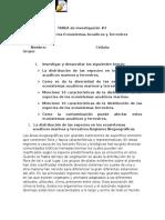 TAREA de Investigación - Copia (2)