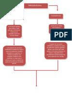 103741927-Mapa-Conceptual-de-Las-Rutas-Metabolicas.pdf