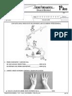 11V1Mat_2016_pro.pdf