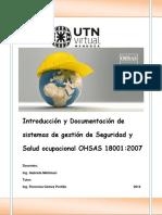 Ohsas 18001- Tema 1