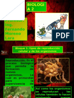 Bloque1 Biologia2 Fray