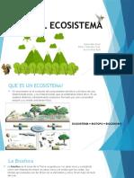 El Ecosistema y Flujo de Energia