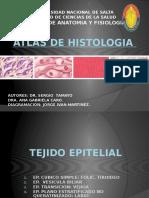 CD de Histologia 2