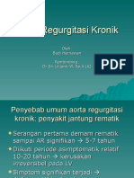 Aorta Regurgitasi Kronik