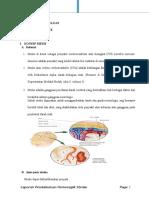 Askep Hemorhagic Stroke