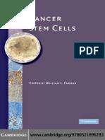 Рак стволовых клеток