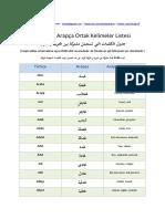 Türkçe ve Arapçadaki Ortak 600 Kelime www.telaffuzz.com.pdf