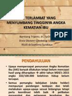 24. the Three Fetal Delays in Peripartum - Dr Bambang