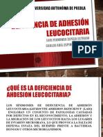 Deficiencia de adhesión leucocitaria