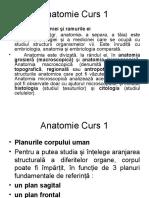 Anatomie Curs I