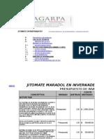 Analis Fianciero Tanque Elevado-jitomate-2017