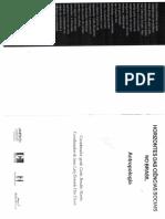 A antropologia-da-administracao-e-da-governanca-no-brasil-teixeira-e-souza.pdf