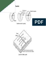 Reabilitarea structurilor (1)