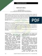 mkn-des2006- (8).pdf