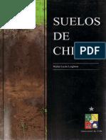 Walter Luzio Leighton-Suelos de Chile-Universidad de Chile (2010)