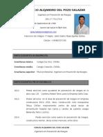 CV Ignacio Del Pozo Ingeniero 2017