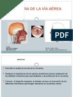 SEMINARIO DE ANATOMIA DE LA VIA AEREA.pptx