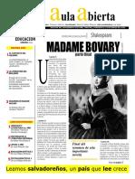 Madame Bovary - Realismo Magico