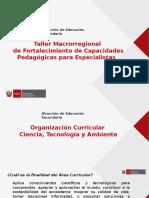 DIA 1 - Organizacion Curricular CTA_.pptx