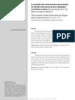 A Evolucao Dos Instrumentos de Protecao