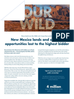 Report--New Mexico Lands and Outdoor Opportunities Lost to the Highest Bidder