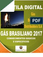 APOSTILA GÁS BRASILIANO 2017 ENGENHEIRO DE GÁS NATURAL + BRINDES
