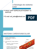 fisiologiaeanatomiadosistemacardiovascular-090707113151-phpapp01
