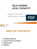 Template Technical Capacity.pptx