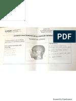 accesos anatomicos dtc